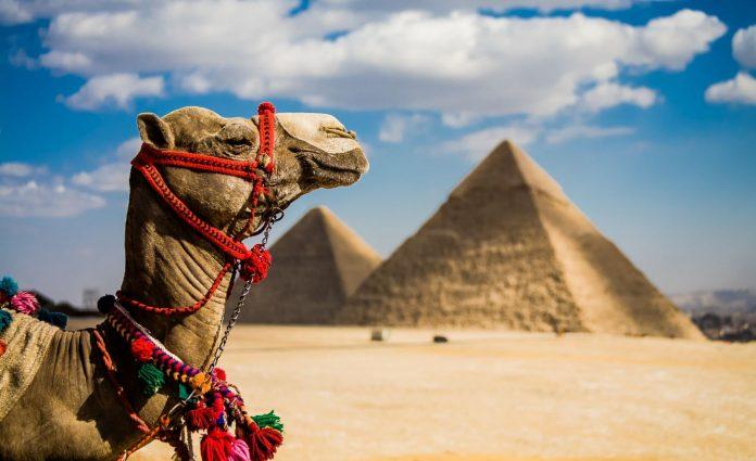 egipat putno osiguranje